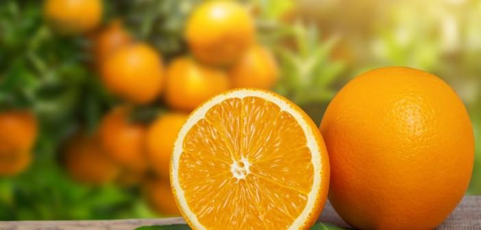 Orange from the garden.