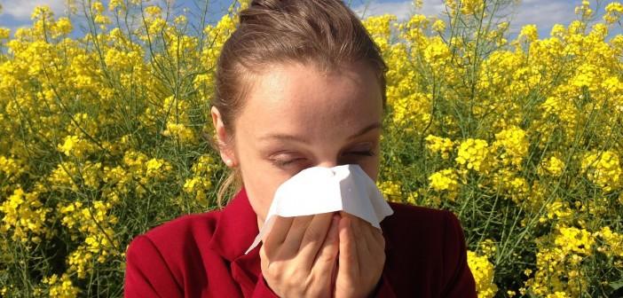 alergija prehlada fp